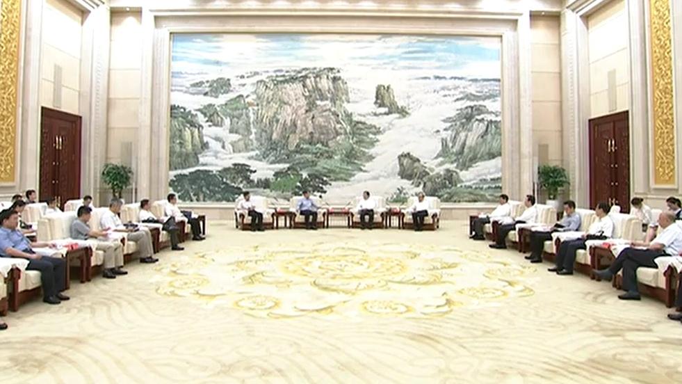 王东峰:扎实推动党中央国务院重大决策部署落地见效