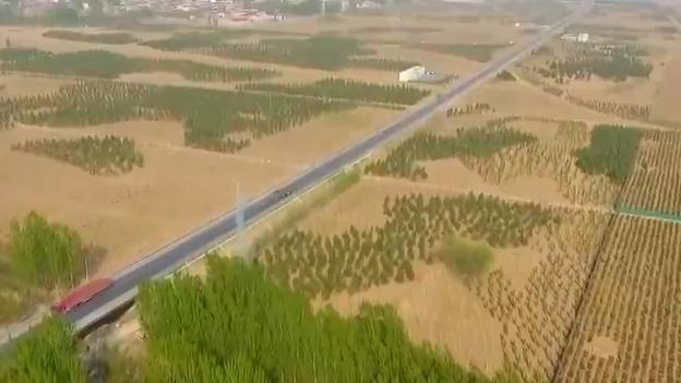 【视频】雄安新区今秋植树造林约2.1万亩