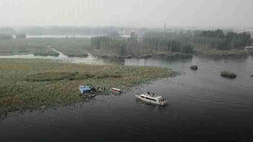 """【视频】为了蓝绿交织的千年雄安——雄安新区""""清渔""""和秋季造林用地工作调查"""