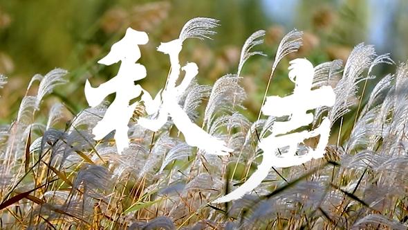 【视频】秋声